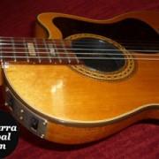 Gibson Chet Atkins CE (Nylon strings) del año 1982