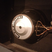 2x Celestion BL10 100w  (8 ohm)