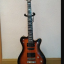 FRAMUS PANTHERA STUDIO CUSTOM