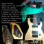 (Luthier)Puesta a punto de guitarras Sierra Sur Sevillana