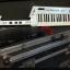 Keytar, y módulo Roland M-g64