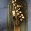 7 Cuerdas + Funda: ESP LTD MH-17KIT BLK