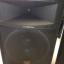Altavoces Musicson Pol 152 550 Wat RMS