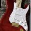 Fender Stratocaster Richie Kotzen mij