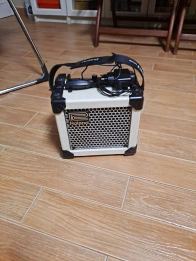 Roland Microcube