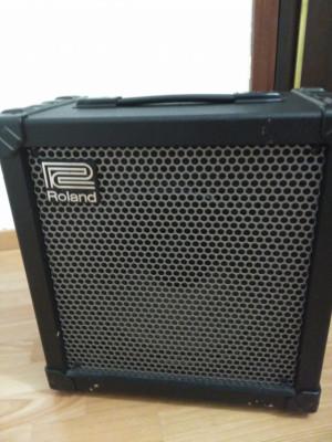 Roland cube 80