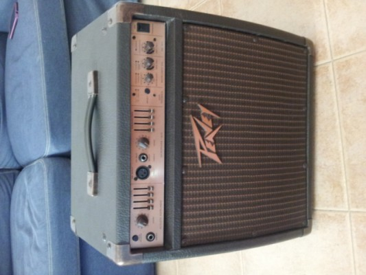 Vendo  Peavey Acoustic 110EFX made in USA