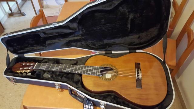 Vendo o cambio guitarra española  de concierto