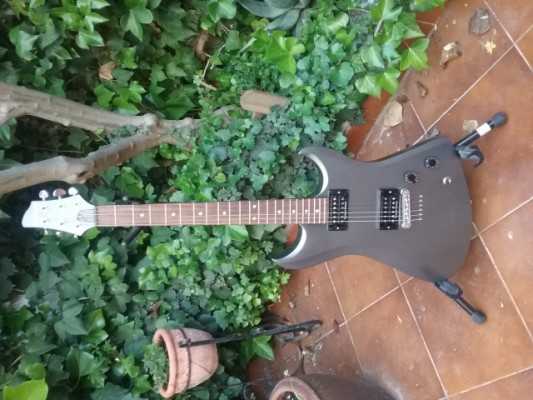 Washburn DD70 USA