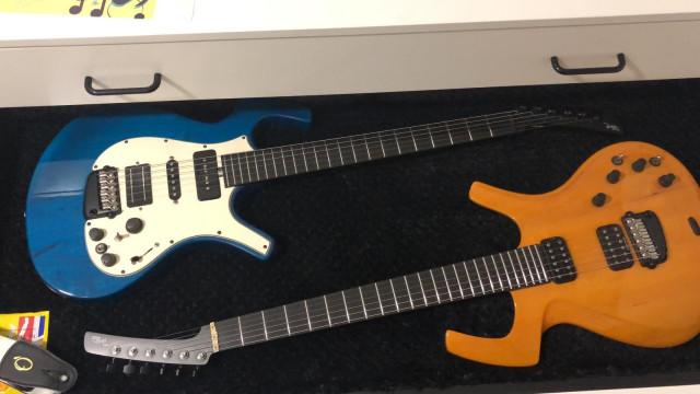 Guitarras de gama alta (Parker, lag...)