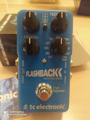 Delay FLASHBACK, T.C. Electronic.