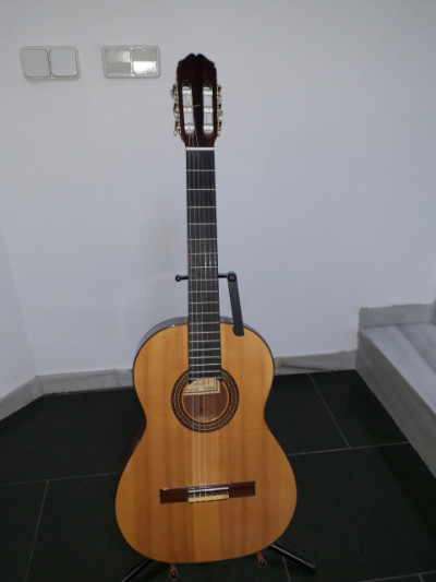 Raimundo Mod. 136