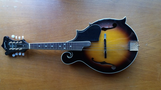 JOHNSON MF-300 MANDOLIN with a hard case included!