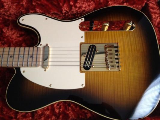 Fender Kotzen telecaster.Última rebaja.