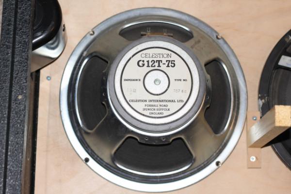 """1980's Celestion G12T-75 de Marshall JCM800 - 12"""""""