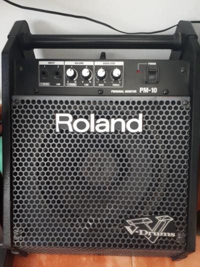Roland PM-10