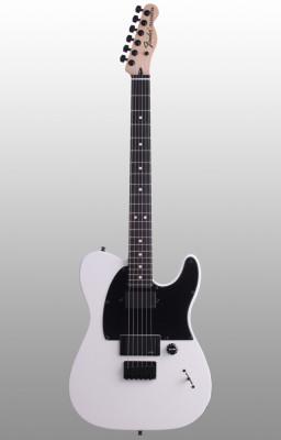 Fender telecaster Jim root