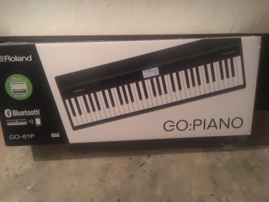 Roland Piano Go