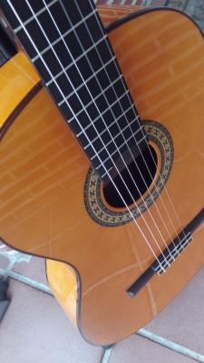 Guitarra Manuel Rodríguez C3F