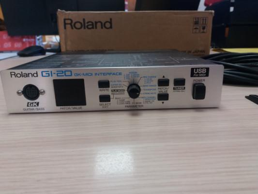 Roland GI 20 + GK3