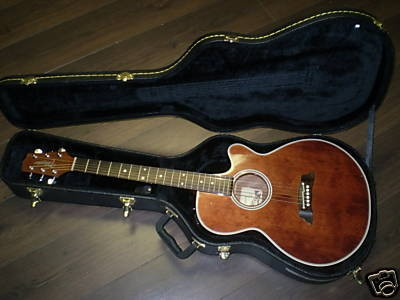 Takamine 261S WR made in JAPAN