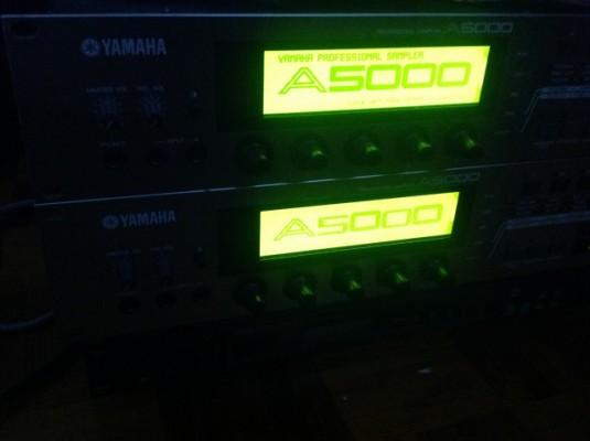 Yamaha A5000 - [Ahora con demo!]