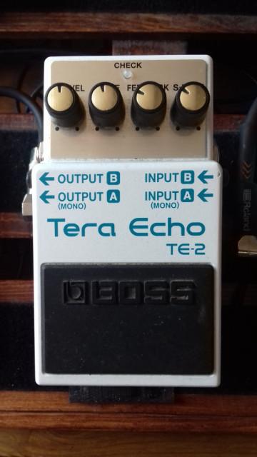 Vendo/Cambio Boss Tera Echo TE-2