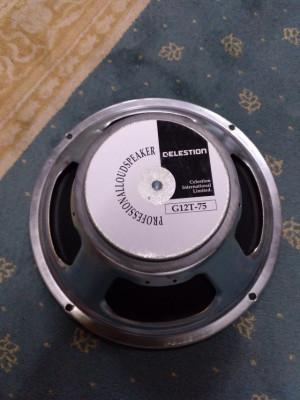 Vendo Celestion GT-75 8h