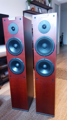 Altavoces Hi End Audiovector M3 (Pareja)