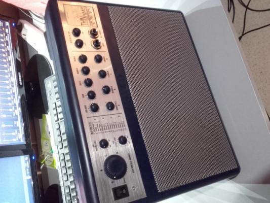 Ampli portatil de guitarra con efectos