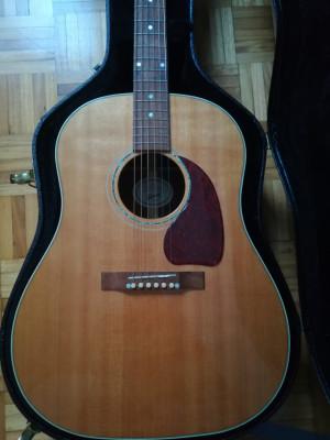 Gibson j15
