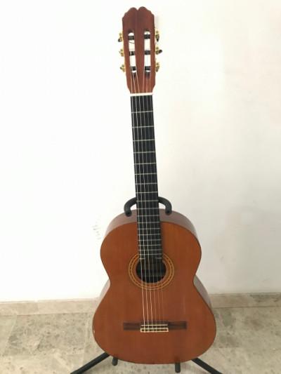 Guitarra admira de palo santo