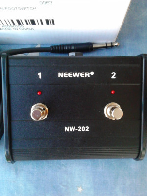 Neewer Dual-Channel 2-Button Footswitch Controller Switcher with