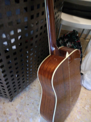 Acústica Aria AW 630