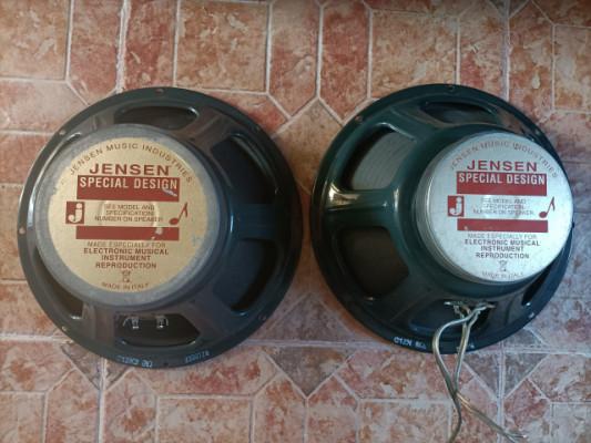 Jensen C12N y C12K2 (ambos 8 ohm) 2007 y 2011 cambio x Greenbacks