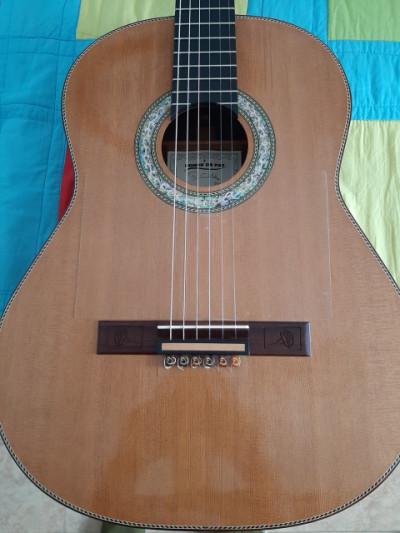 Guitarra Cedro/Palosanto Madagascar