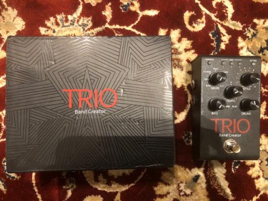 Digitech trio + FS 3X 90€