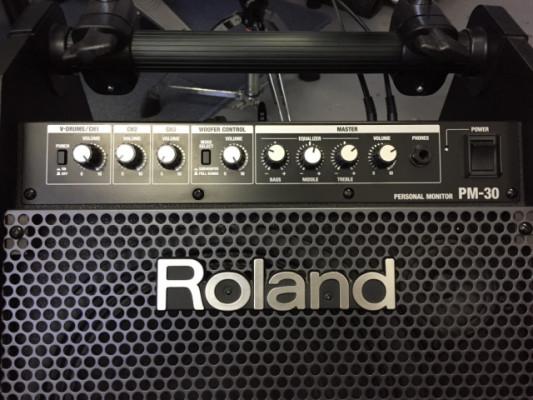 Amplificador Roland PM-30