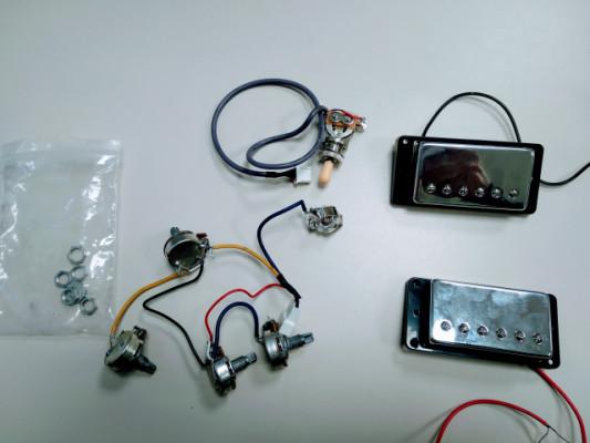 Pastillas y electrónica Les Paul