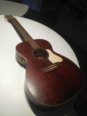 Guitarra acústica Art&Luthery Legacy ten