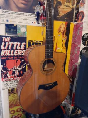 Taylor Leo Kottke Signature Model 12 String Guitar