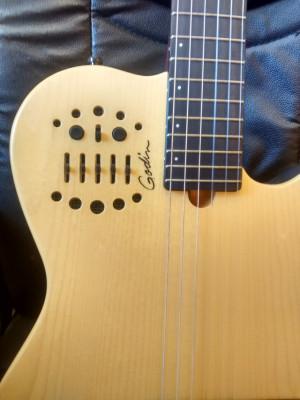 Guitarra Godin+funda+Roland