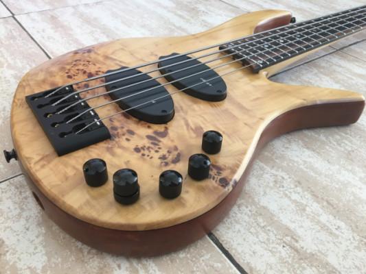 JCR Eclipse Poplar Custom 5c o Cambio Por Guitarra Electrica