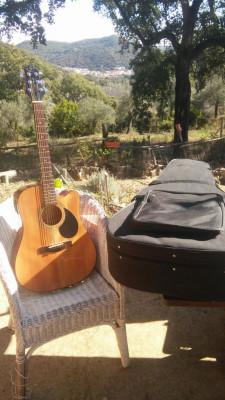 Guitarra electroacustica Samick