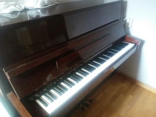 Piano pared, Pearl River