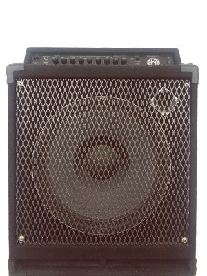 AMPLIFICADOR SWR WORKINGMAN´S 15