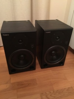 Monitores Roland DS8