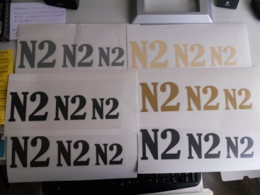 "Washburn n2 pegatinas decal ""N2"""