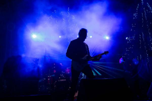 Clases de Guitarra para Profesionales.