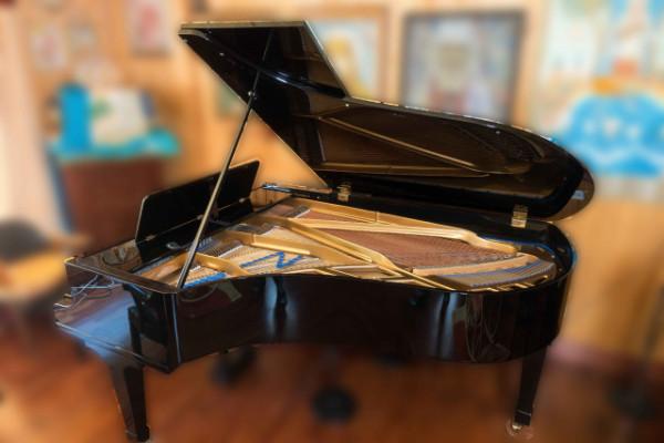 Piano media-cola BLÜTHNER ALIQUOT 210
